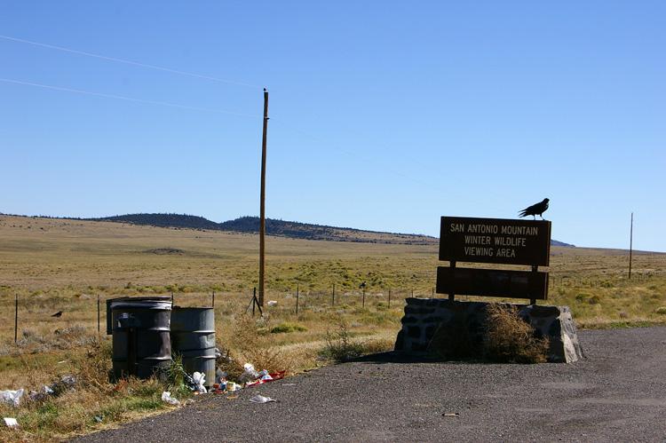 Ravens and trash cans near San Antonio Mountain, New Mexico