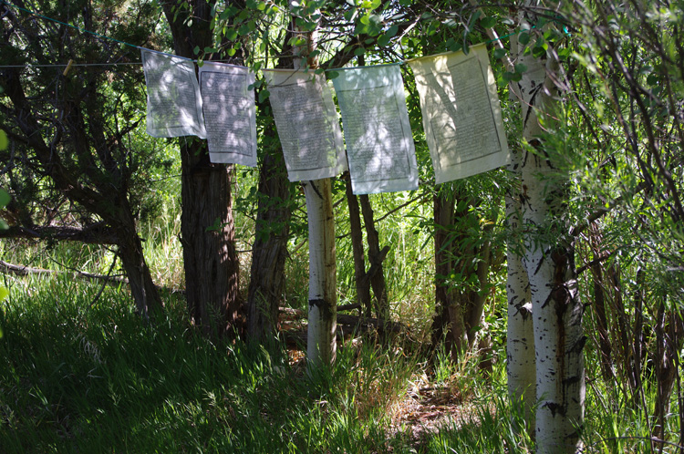 prayer flags by the acequia