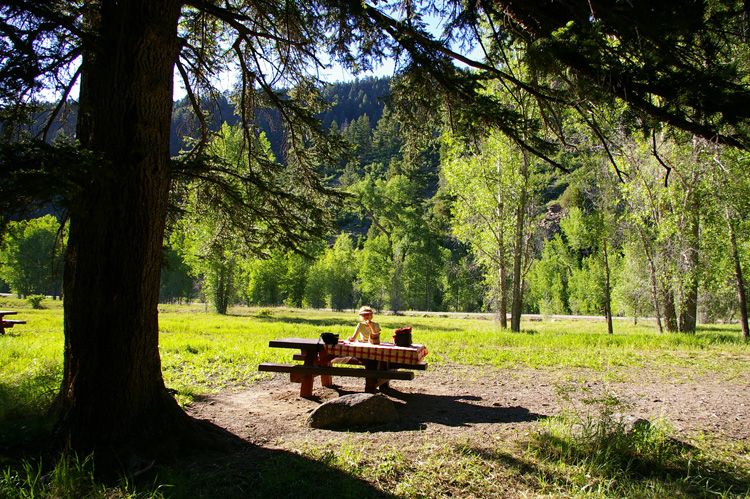 Rio Pueblo picnic area east of Taos, NM