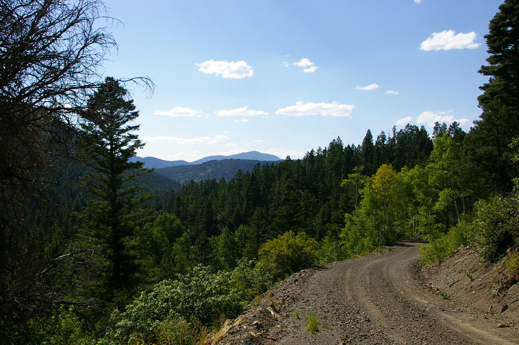 A stretch of Forest Road 439 in Carson National Forest near Taos, New Mexico.