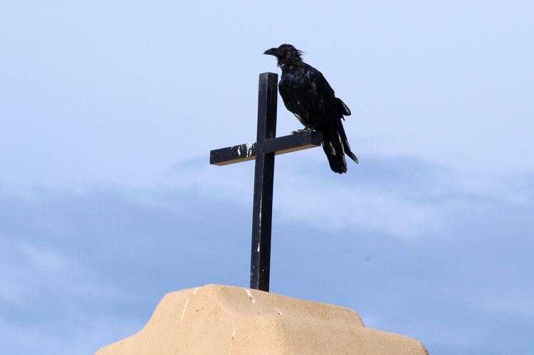 Raven on a cross