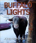 BUFFALO LIGHTS: Revised Edition